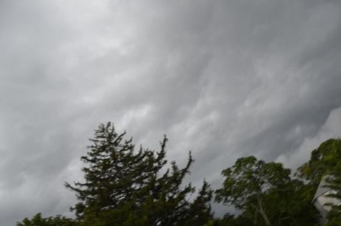 martha's vineyard rainy day