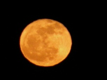 the promise 365, jamie eslinger, full wolf moon