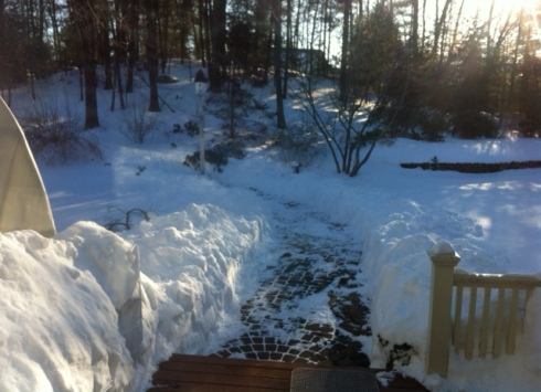 snow path, jamie eslinger, the promise 365, the promise daily