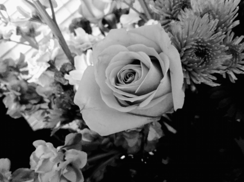 flowers thepromise365.com